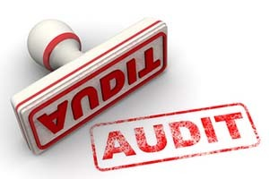 Audits and Analysis